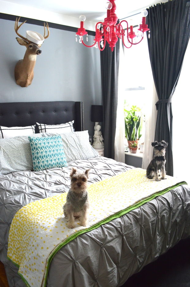 Bedroom and schnauzers | at home with Brooklyn Homemaker | Brooklyn Homemaker