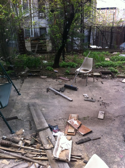 "backyard ""before"" 