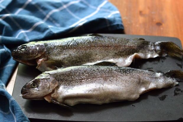 rainbow trout almondine | Brooklyn Homemaker