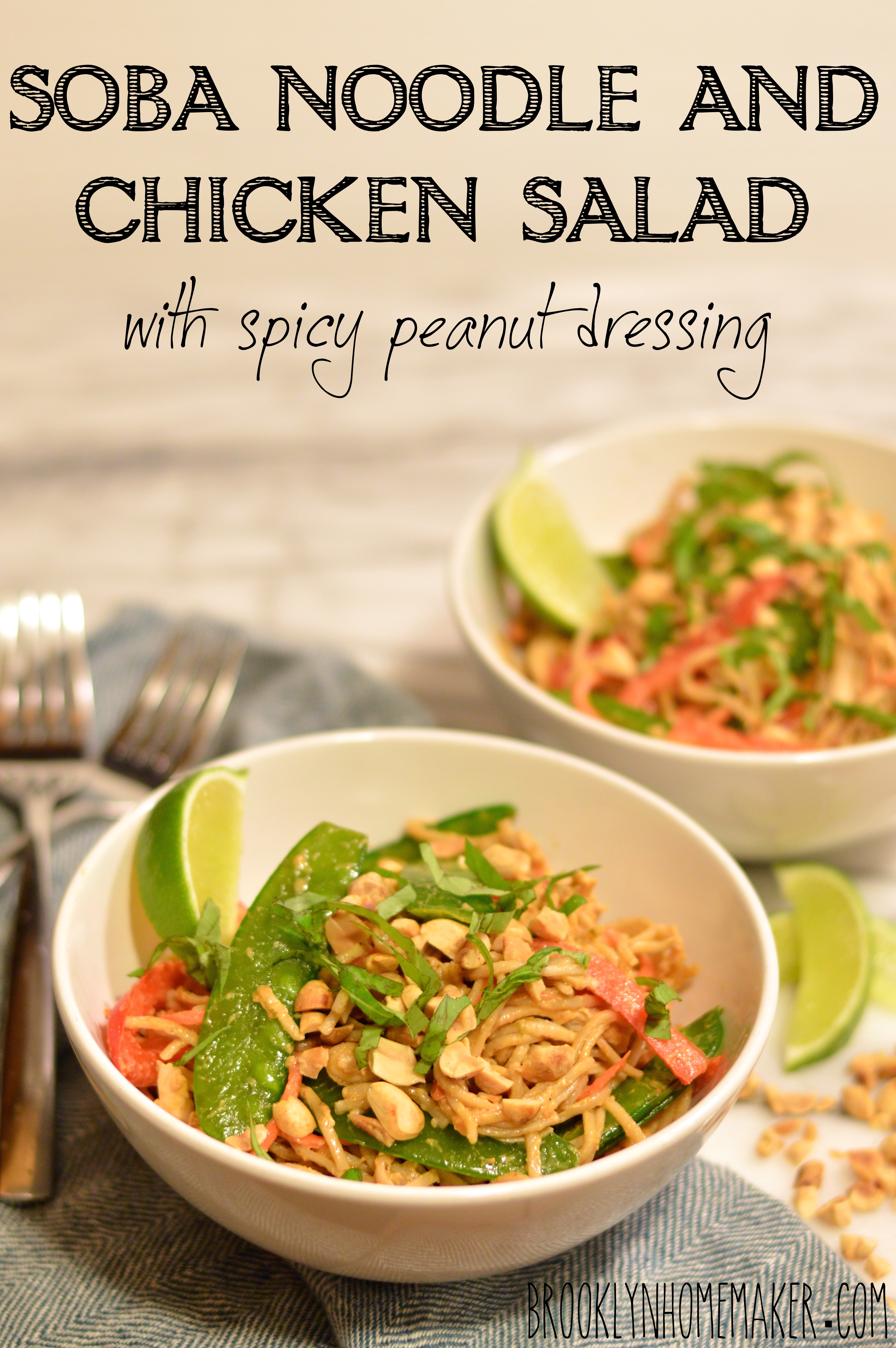 soba noodle and chicken salad with spicy peanut dressing
