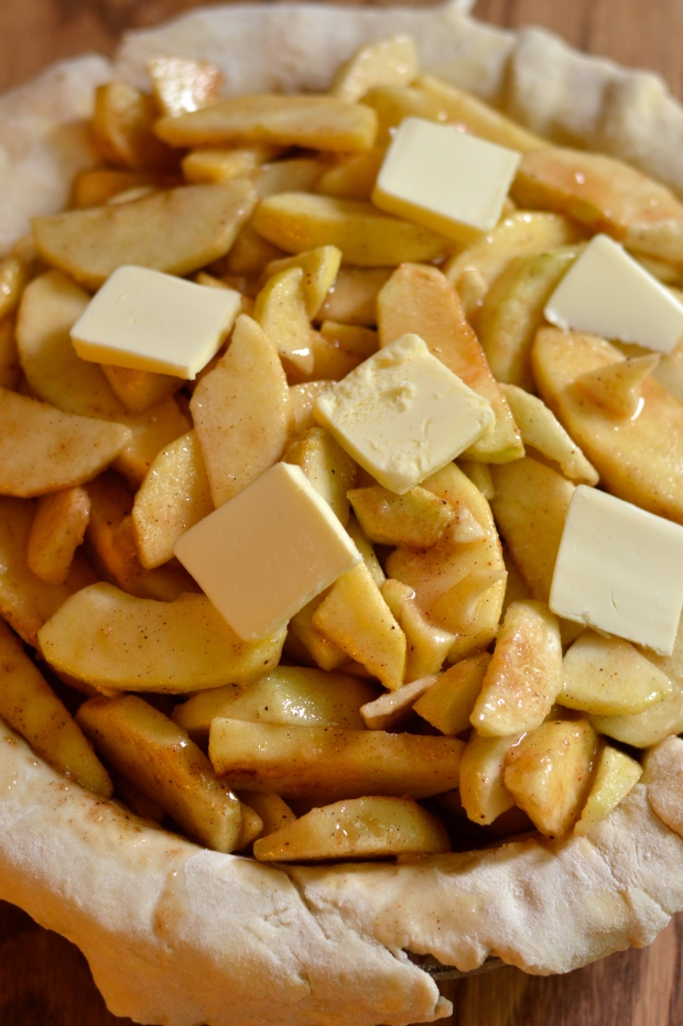 Classic Apple Pie Recipes — Dishmaps